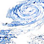 台風セミナー2014開催のお知らせ